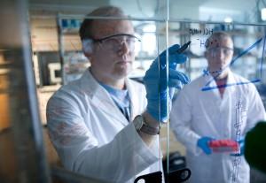 Students in the lab, Bioengineering Minor Program