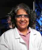 Surya Mallapragada