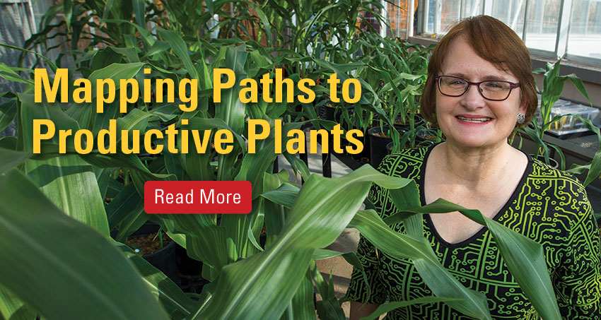 Julie Dickerson among corn plants in greenhouse