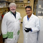 "Iowa State Researchers Setting Up ""Dream Team"" to Research, Develop Nanovaccines"