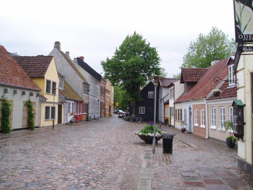 University of Southern Denmark (Odense)